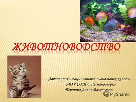 Презентацию по географии на тему животноводство