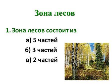 Скачать презентации на тему лесная зона россии 4 класс