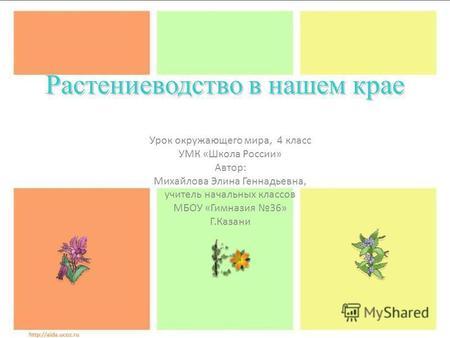 Презентация на тему овощеводство на
