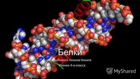 белок картинка химия