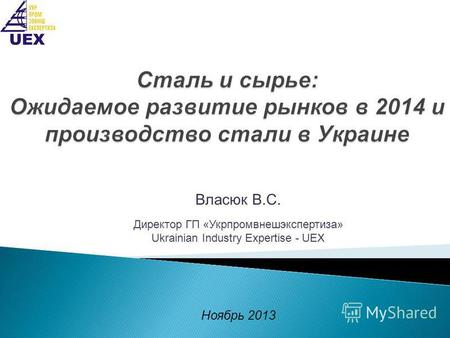 Власюк В.С. Директор ГП «Укрпромвнешэкспертиза» Ukrainian Industry Expertise - UEX Ноябрь 2013.