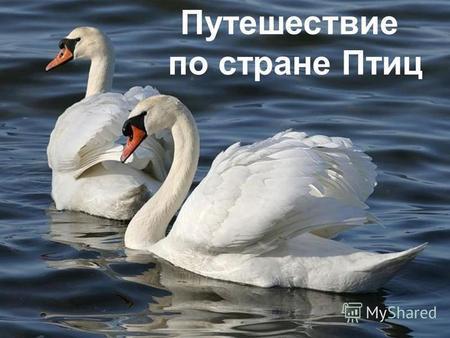 кто такие друзья знакомые