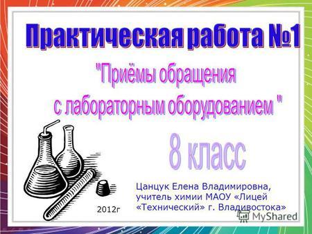 Цанцук Елена Владимировна, учитель химии МАОУ «Лицей «Технический» г. Владивостока» 2012 г.