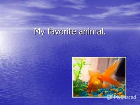 My favorite animal.. My favourite animal. My favourite animals are fish. They are orange, black, white, pink and so on. The fish have got little bodies,