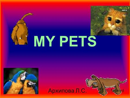 MY PETS Архипова Л.С. Lets review words Words A dog A cat A rabbit A fish A fox A tiger A horse A bear A parrot A cock An elephant A mouse A crocodile.