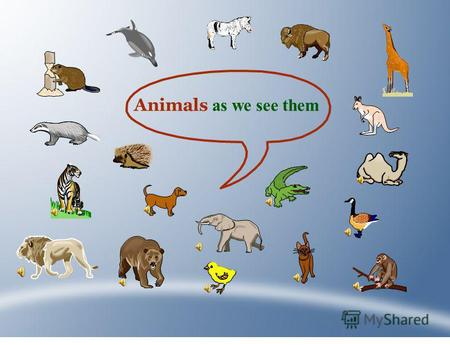 Animals as we see them. Where do they live? At home On a farm In the zoo In the circus In wild life.