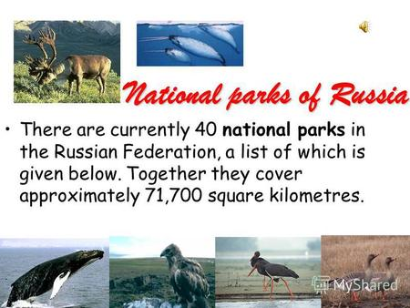 National parks of Russia There are currently 40 national parks in the Russian Federation, a list of which is given below. Together they cover approximately.