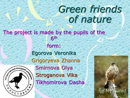 Green friends of nature The project is made by the pupils of the 6 th form: Egorova Veronika Grigoryeva Zhanna Grigoryeva Zhanna Smirnova Olya Stroganova.