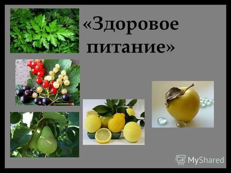 здоровое питание должно