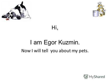 Hi, I am Egor Kuzmin. Now I will tell you about my pets.