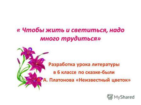 Неизвестный цветок платонов главная мысль
