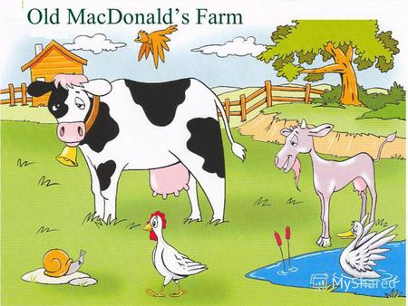Old MacDonalds Farm Choose and fill in. My cow has got a … body. It has got two … ears and four … legs. long fat big.