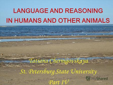 LANGUAGE AND REASONING IN HUMANS AND OTHER ANIMALS Tatiana Chernigovskaya St. Petersburg State University Part IV.