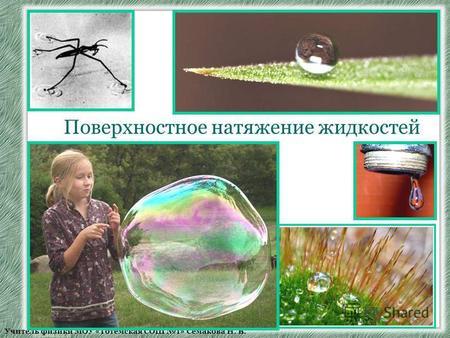 презентация поверхностное натяжение жидкости 10 класс