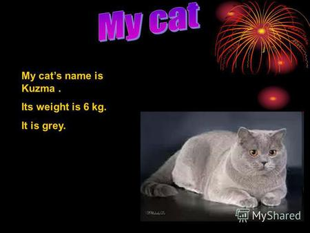My cats name is Kuzma. Its weight is 6 kg. It is grey.