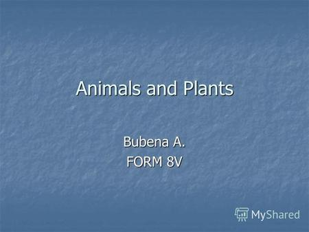 Animals and Plants Bubena A. FORM 8V. No one knows how many different species of wild plants and animals there are on our planet.