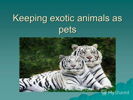 Keeping exotic animals as pets. Would you keep a cat in a fish bowl? Or a hamster in a horse stable? Would you feed rabbit chow to your dog, or try to.