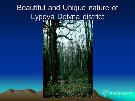 Beautiful and Unique nature of Lypova Dolyna district.