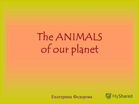 The ANIMALS of our planet Екатерина Федорова The animals which live in a SAVANNA.