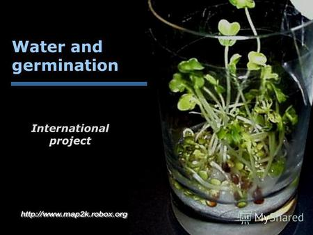 Water and germination International project. Water!... I t has no taste, nor color and smell ether, it is quite impossible to describe it, its been enjoyed.