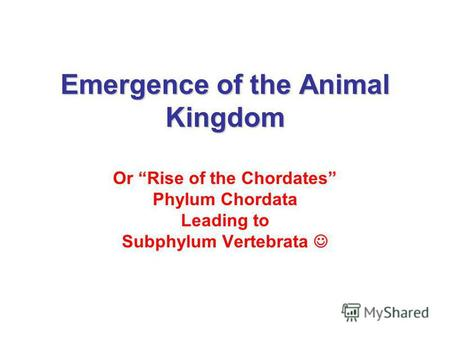 Emergence of the Animal Kingdom Or Rise of the Chordates Phylum Chordata Leading to Subphylum Vertebrata.