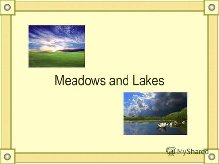 Meadows and Lakes. lake otter Heron perch dragonfly.