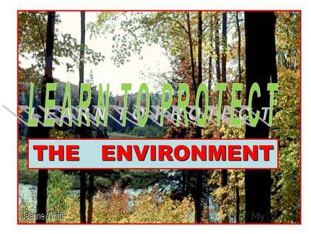 1 THE ENVIRONMENT. AIR POLLUTION WATER POLLUTION RUBBISH NOISE.