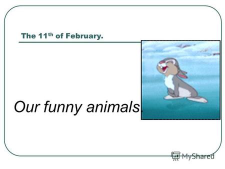 The 11 th of February. Our funny animals.. ANIMALS PUZZLE GOD OMUSE NOIL TCA.