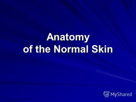 Anatomy of the Normal Skin. Skin Main Functional Areas The skin can be divided into three main functional areas. These are the: epidermis – the major.