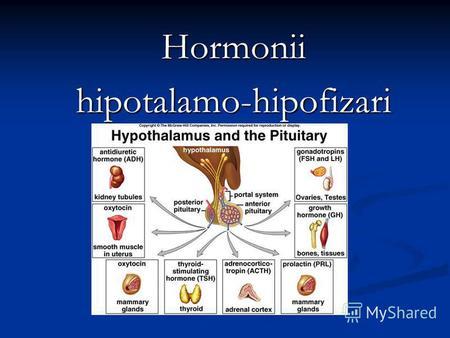 portal hypertension pierdere în greutate)