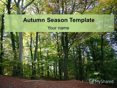 Autumn Season Template Your name. Example Bullet Point Slide Bullet point –Sub Bullet.