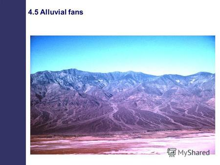 4.5 Alluvial fans. Basin margin (fault) Feeder canyon Active depositional lobe Fan apex Fan toe Alluvial fans.
