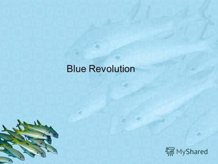 Blue Revolution. Message In 2013, we defined Leading the Blue Revolution as our vision. To us, Leading the Blue Revolution is both an ambition and a promise.