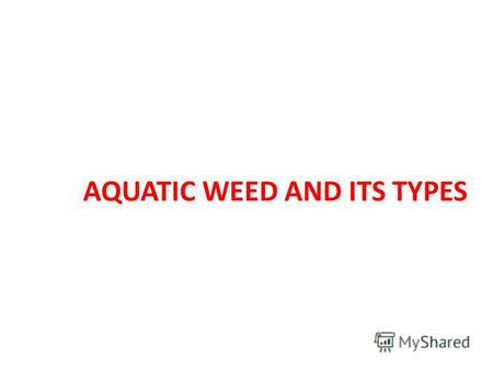 AQUATIC WEED AND ITS TYPES. AQUACTIC WEED Aquatic weeds can be broadly defined as unwanted and undesirable plants which grow and reproduce in an aquatic.