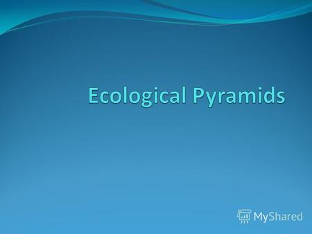 Ecological Pyramid An ecological pyramid is a graphical representation designed to show the number of organisms, energy relationships, and biomass of.