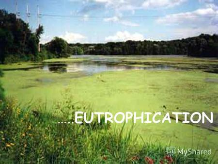 …..EUTROPHICATION. Eutrophication (Greek: eutrophiahealthy, adequate nutrition, development; German: Eutrophie) or more precisely hypertrophication, is.