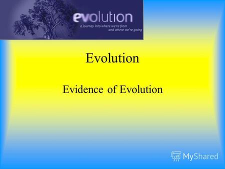 Evolution Evidence of Evolution Evidence supporting evolution Fossil record –shows change over time Anatomical record –comparing body structures homology.