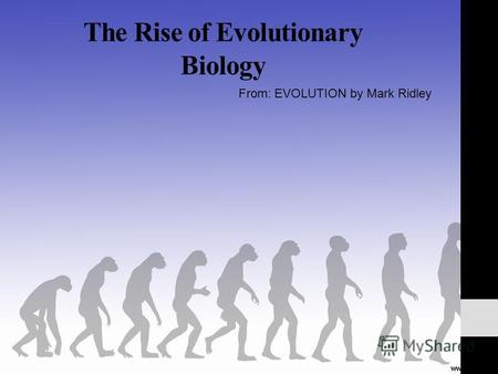 The Rise of Evolutionary Biology From: EVOLUTION by Mark Ridley.