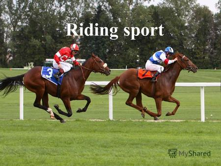 Riding sport. Riding sport - sport with horses. When riding on horseback rider is actively engaged with the movement of the horse.