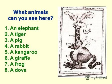 What animals can you see here? 1. An elephant 2. A tiger 3. A pig 4. A rabbit 5. A kangaroo 6. A giraffe 7. A frog 8. A dove.