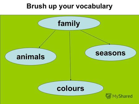 Brush up your vocabulary family animals seasons colours.