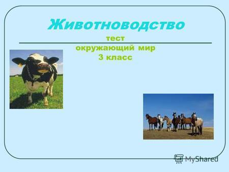Презентация на тему Животноводство тест окружающий мир класс  Животноводство тест окружающий мир 3 класс Что даёт животноводство людям