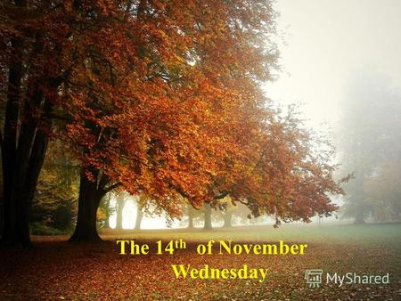 The 14 th of November Wednesday. People Speak English All Over the World.