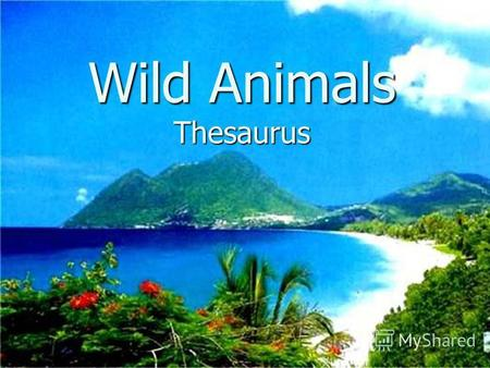 Wild Animals Thesaurus Contents Crocodile Monkey Elephant ElephantElephant TigerTiger Jaguar Jaguar TigerJaguar.