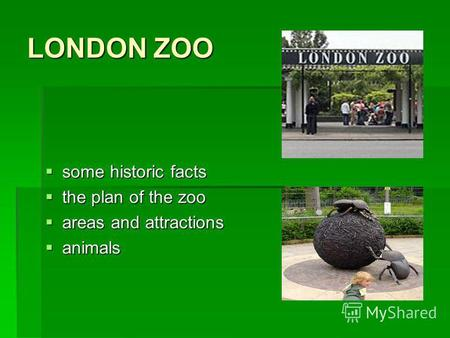 LONDON ZOO some historic facts some historic facts the plan of the zoo the plan of the zoo areas and attractions areas and attractions animals animals.