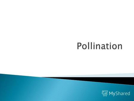 Pollination is the process by which pollen is transferred in the reproduction of plants, thereby enabling fertilization and sexual reproduction. In spite.