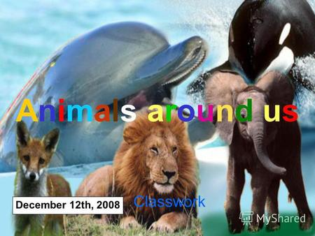 Animals around us December 12th, 2008 Classwork. December 12th, 2008CLASSWORK Phonetic exercises [I:] eagle, sea [e] desert [әυ] ocean [aυ] mountain [e.