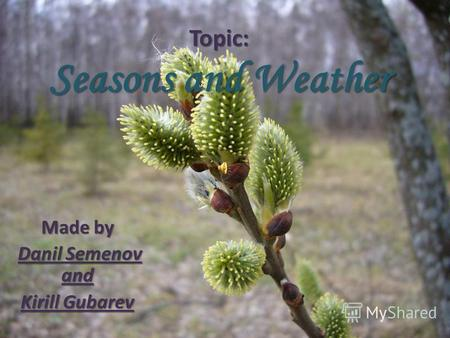 Topic: Seasons and Weather Made by Danil Semenov and Kirill Gubarev.