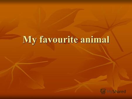 My favourite animal. I like animals and I have got a cat, a dog and a parrot at home. I take care of my pets by feeding them. I spend a lot of time with.