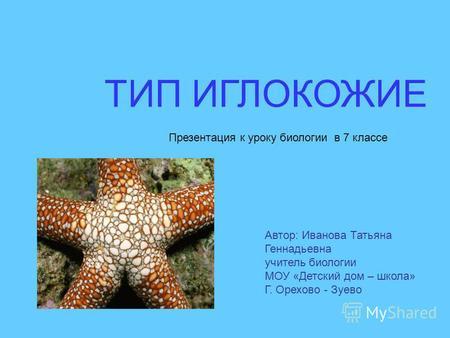 Презентацию на тему медузы 7 класс